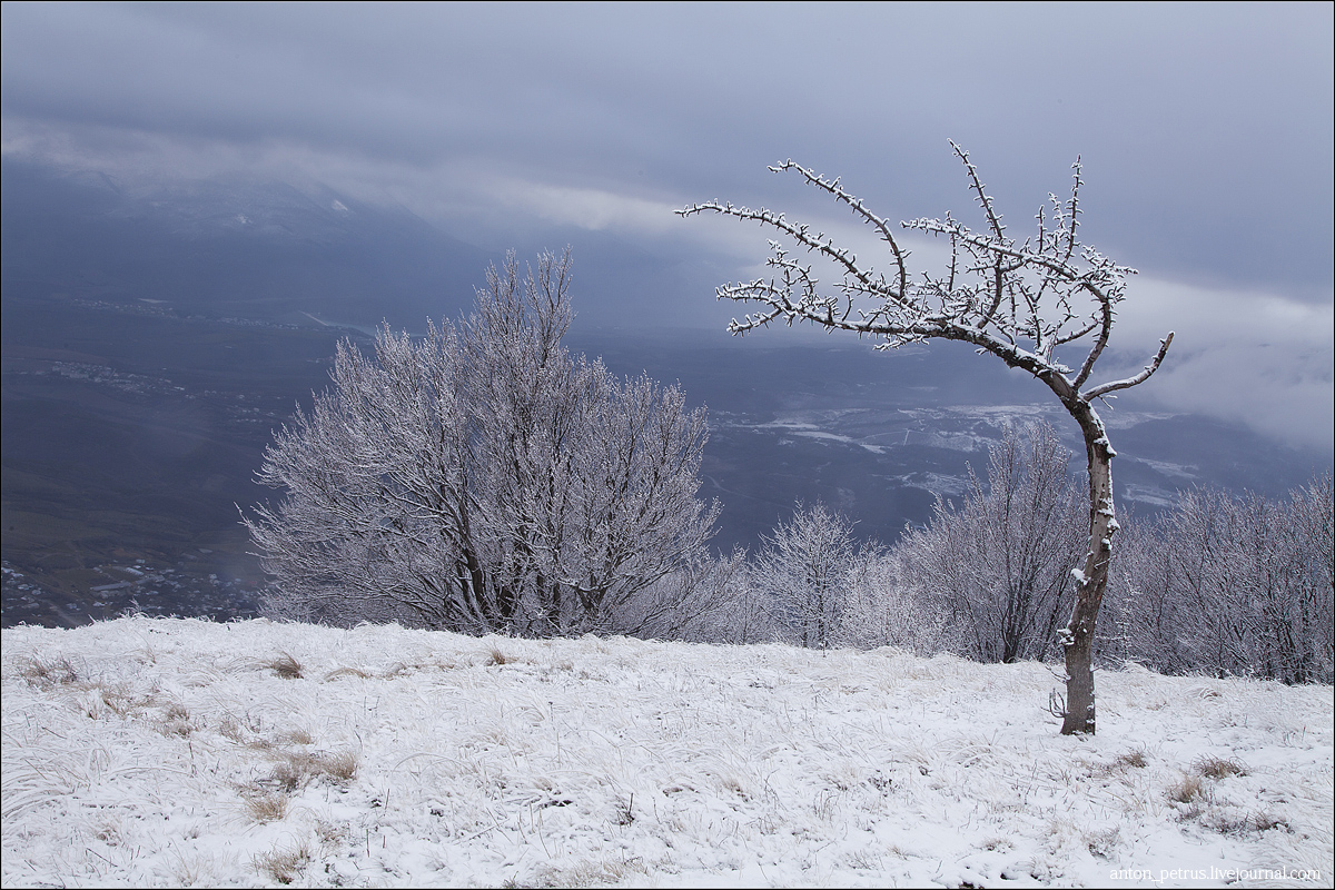 Зимняя сказка Крыма