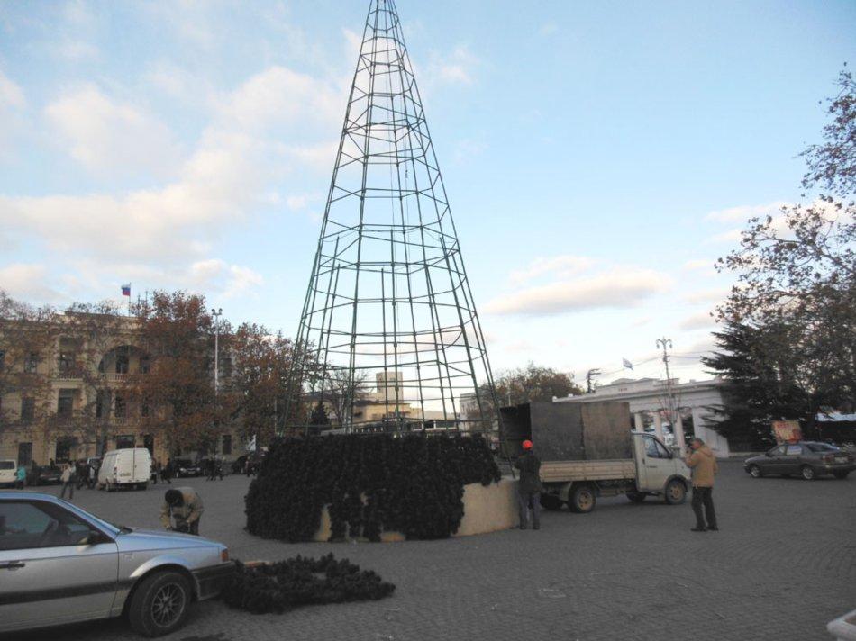 У севастопольской елки будет 702 ветки