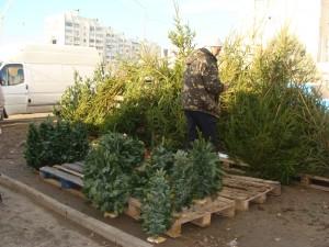 елочные базары, Крым