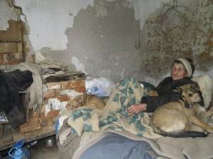 слепая бабушка и ее собаки, Евпатория