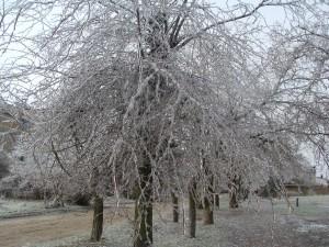 ледяной дождь, Крым