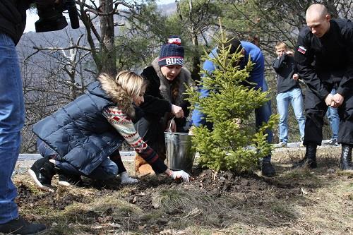 Наталья Поклонская: «Посадите деревья и будет красиво!»