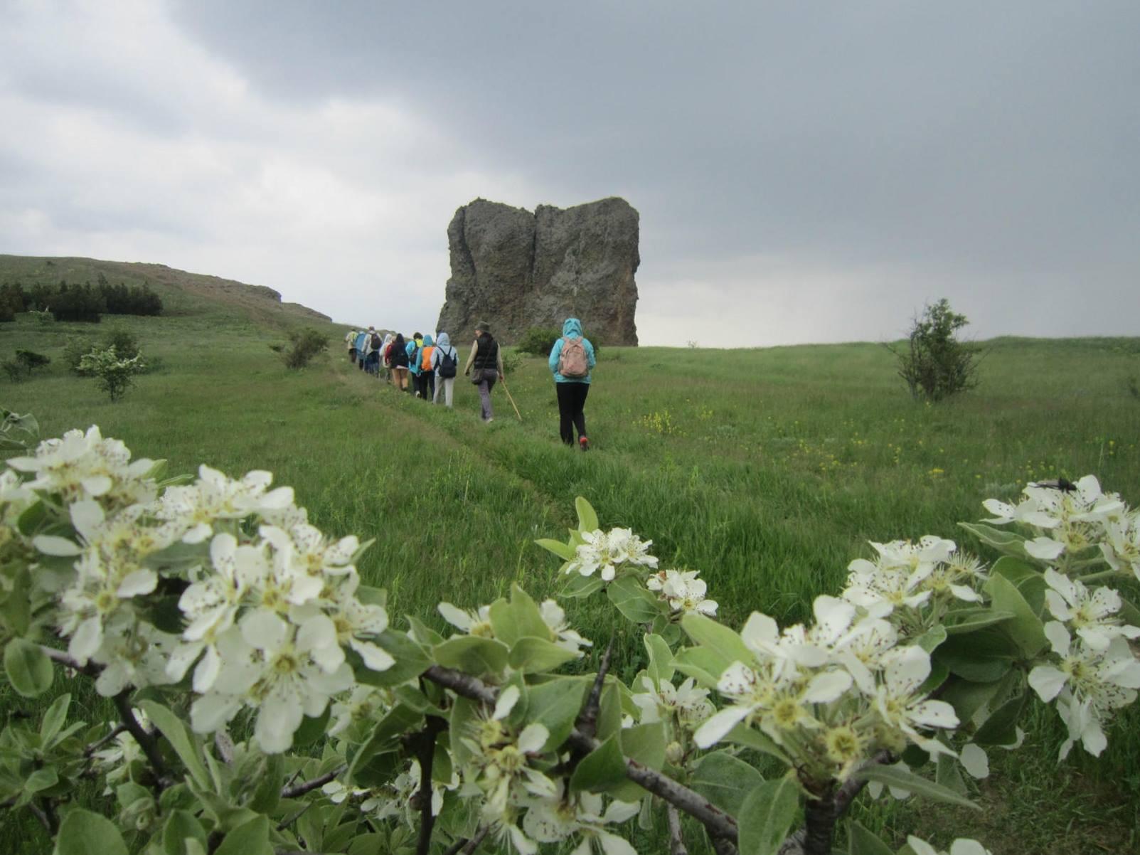 С начала года Крым посетило 630 тысяч туристов