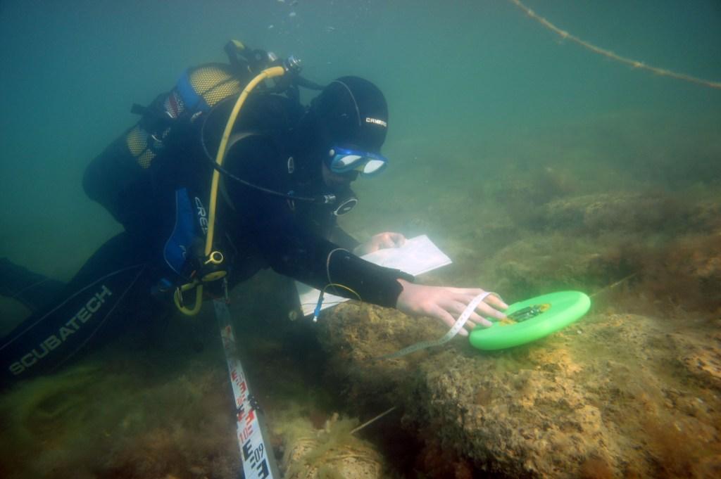 В Крыму будут развивать подводный туризм