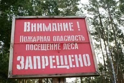 В Крыму из-за жары запретили посещение лесов