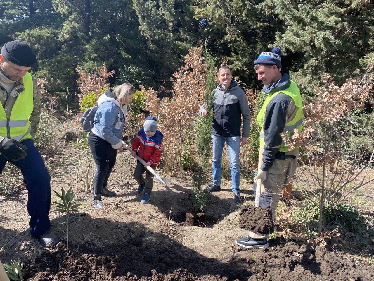 Крымчане высадили в парке «Форос» новые деревья